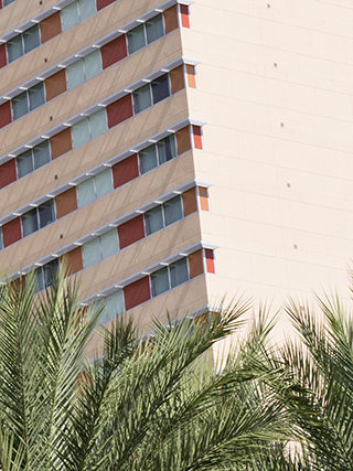 Hotel and palm trees - 100% crop